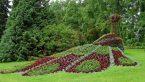 Bahçe Peyzaj Hizmetleri